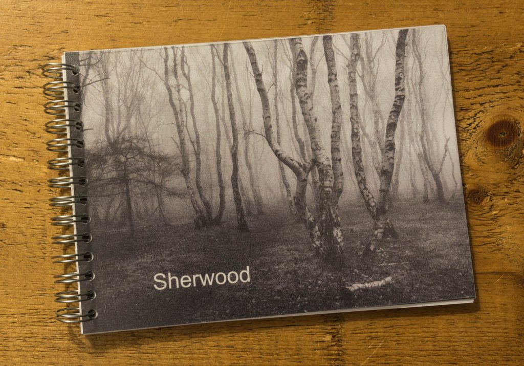 Sherwood Book 1